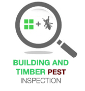 pest building inspection