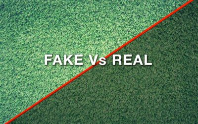Artificial Lawns Vs Real Grass